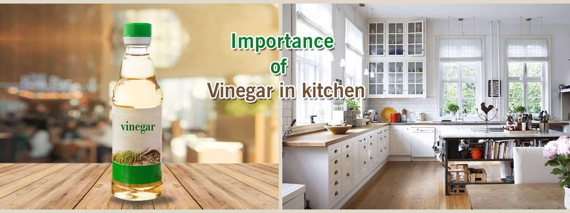 Importance Of Vinegar In Kitchen