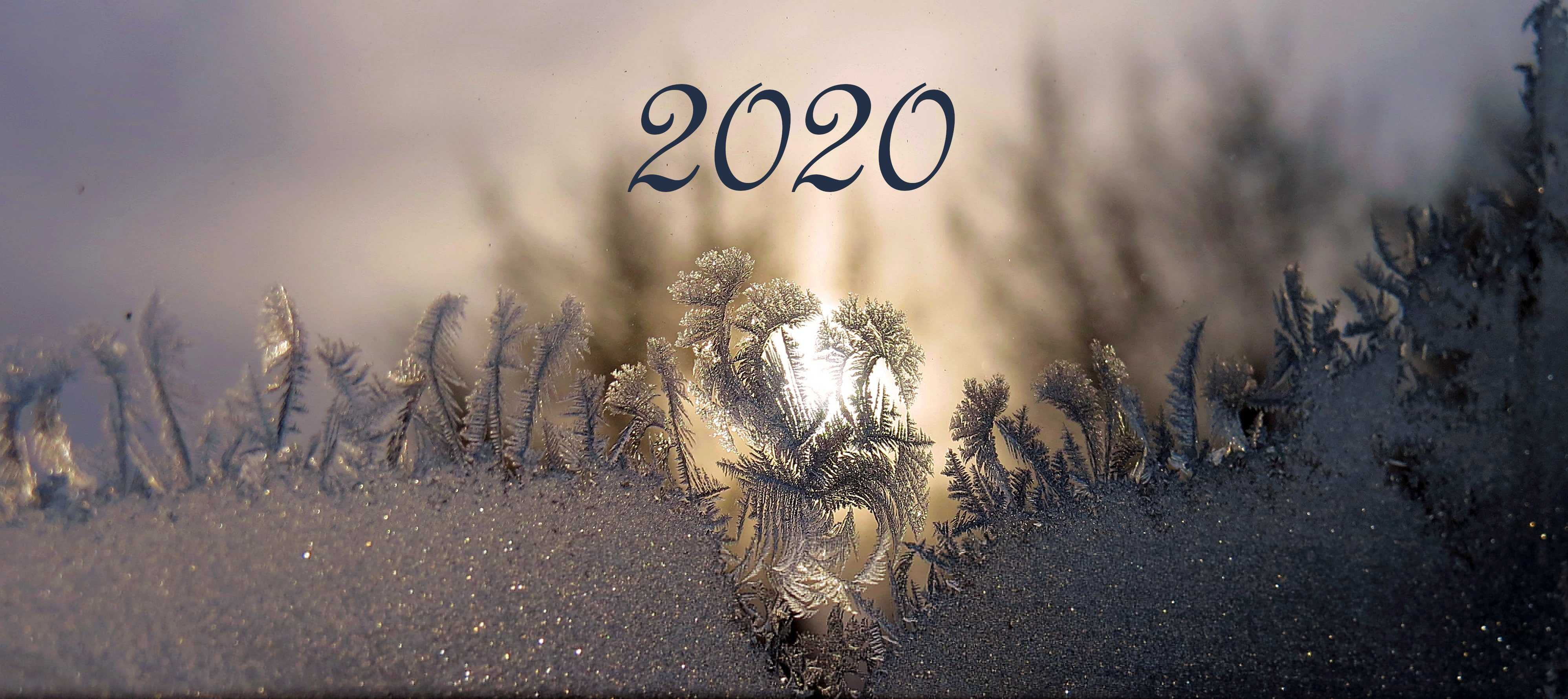 2020 Disasters