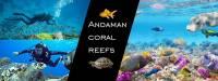Andaman coral reefs